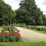 Der Dahliengarten