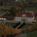 Blick vom Weinberg hinab zum Schloss